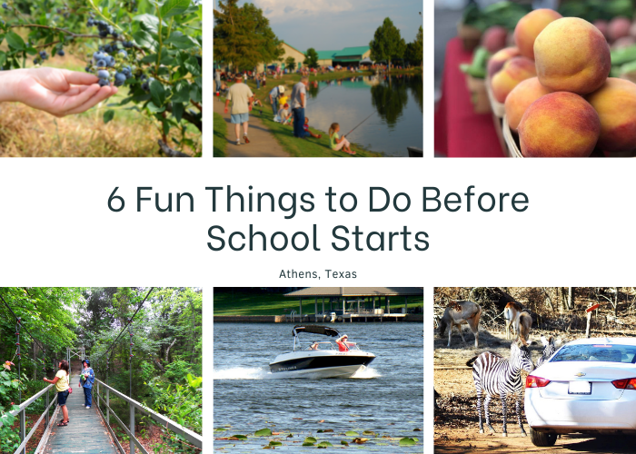 6 Fun Things to Do in Athens Before School Starts