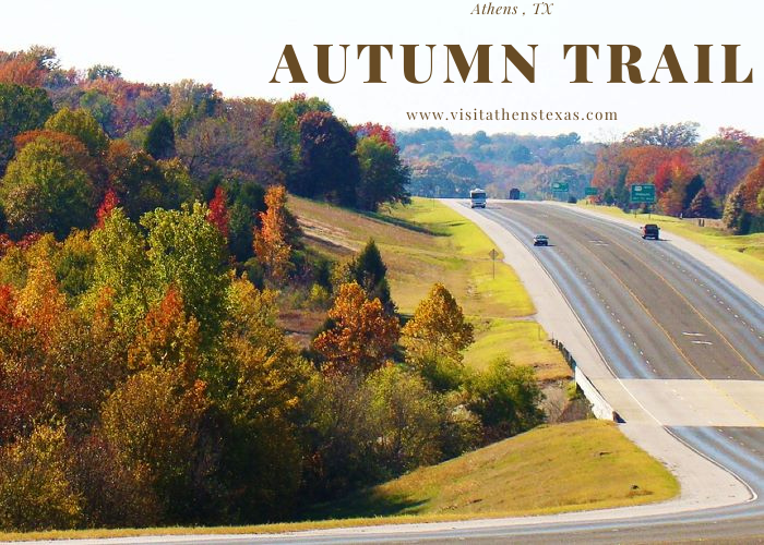 Autumn Trail is Almost Here!