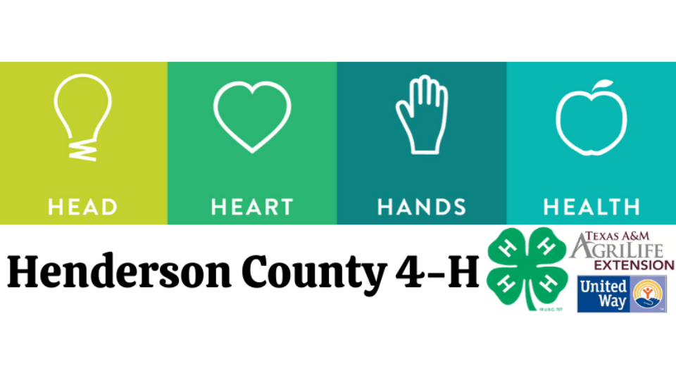 Henderson County 4-H Open House