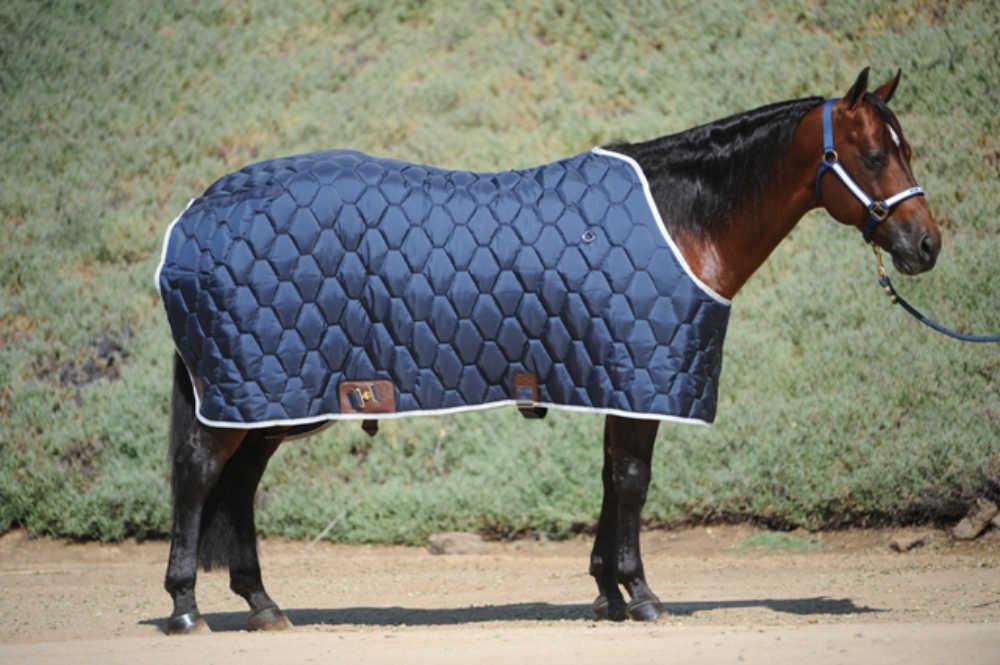Northwest Stable Blanket