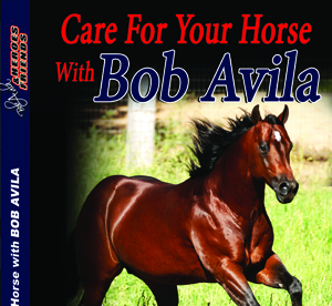 Care For Your Horse With Bob Avila