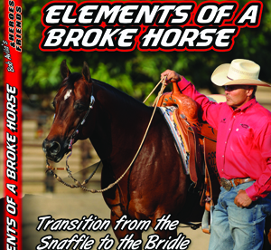 Elements of a Broke Horse, Transition from a Snaffle to Bridle Part 1