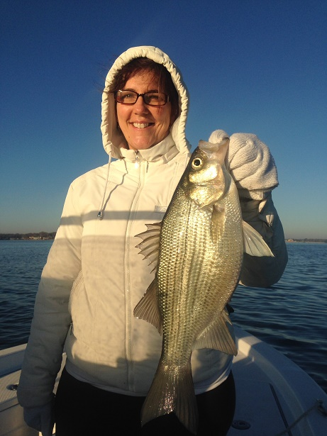 Evans WhiteBass with BigCrappie Guides CCL TX