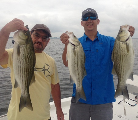 07-19-14 WILLIAMS HYBRIDS WITH BIGCRAPPIE TX