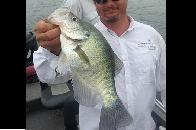 Nice Cedar Creek Fall 2014 Crappie