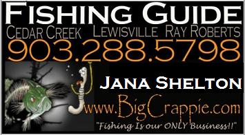 Jana Card 2013