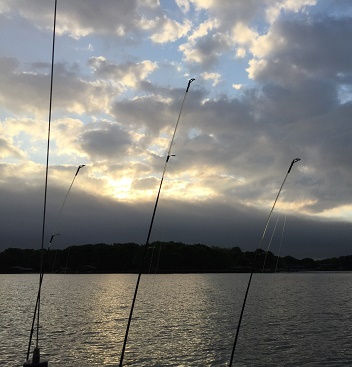 Morning Made for Fishing