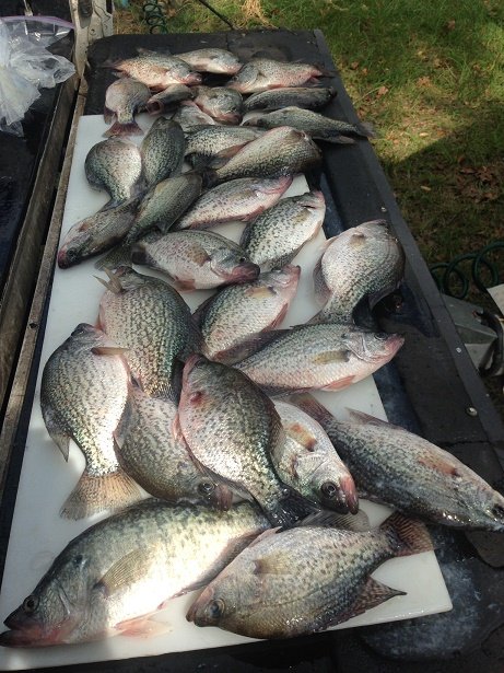 Tailgate of Crappie on CCL with BigCrappie Guides