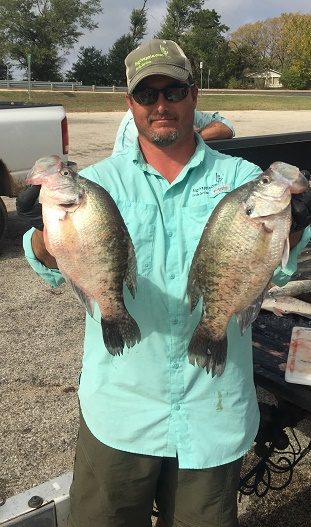 Large Crappie