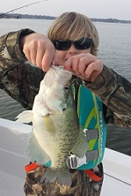 H Crappie 1