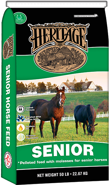 Heritage Senior Horse | Big V Feeds provide a full line of