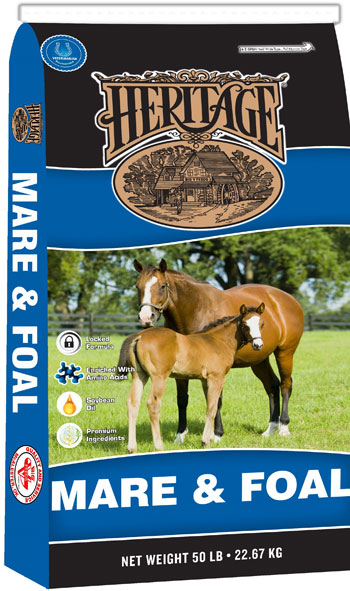 Heritage Mare & Foal 16%
