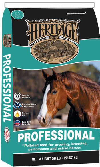 Heritage Professional Horse