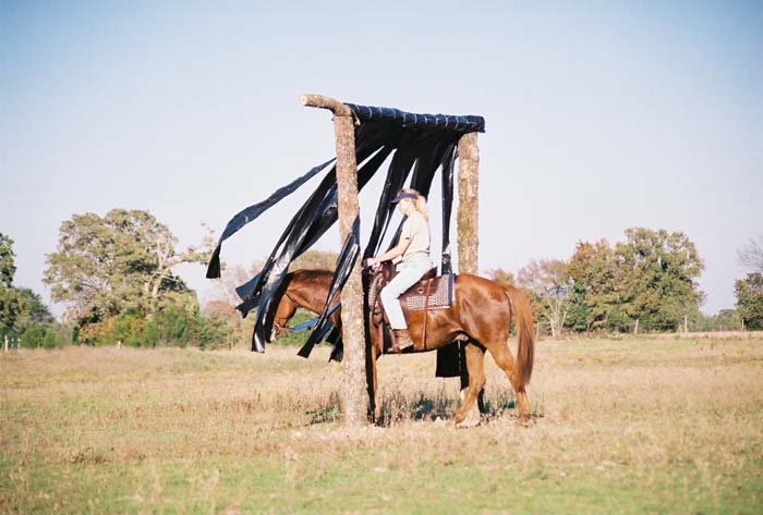 Trail Riding Clinic Cowboy Curtain