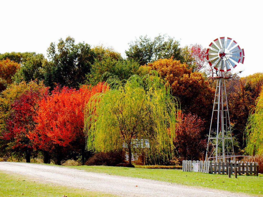 Arboretum Windmill