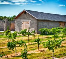 Castle Oaks Winery