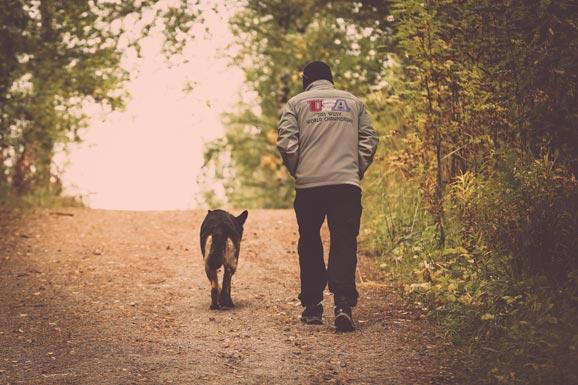 Dave Kroyer Dog Training