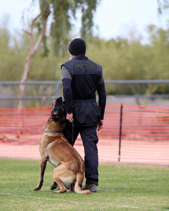 K9 schutzhund training a manual for ipo