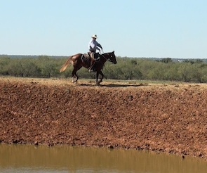 Colt Starting: First Ride Outside - On The Pond Bank