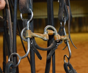 Sean Flynn: Bits I Use to Train Cutting Horses