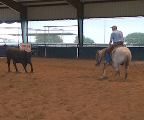 NCHA cutting trainer Clint Allen on Working Square and Confidence Building