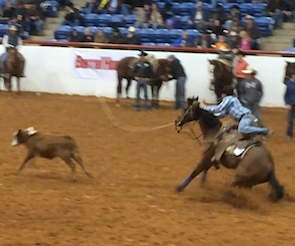 Tuf Cooper winning Calf Roping at 2014 Timed Event Challenge