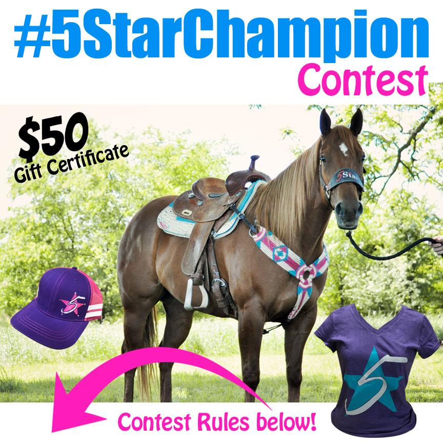5 star champion