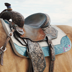 "The Barrel Racer 30"" x 28"" - Custom"