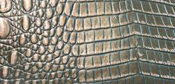 Mermaid Croc