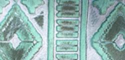 Mint Navajo