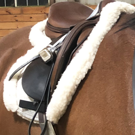 5 Star English Saddle Pads