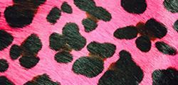 Pink Jaguar
