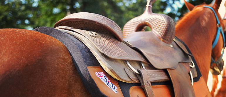 Saddle Pads & What Manufacturers Don