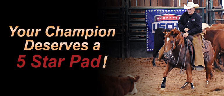 5 Star Champion - Terry Moore (Owner of 5 Star Equine Products)