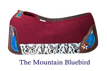 The Mountain Blue Bird