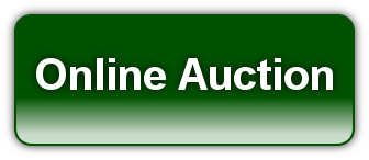 Online Auction Button