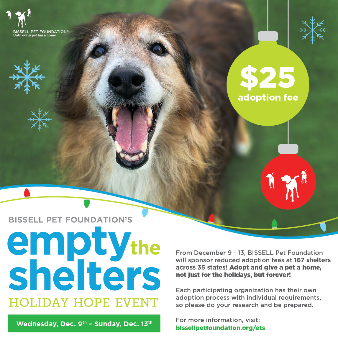 $25 Adoption Fee December 9-13th