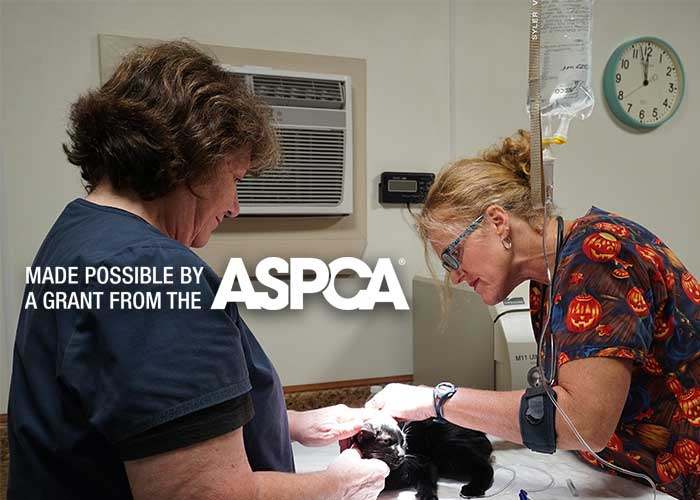 HSCCL Receives $10,000 ASPCA Grant to Assist in Funding ASPCA Relocation Program
