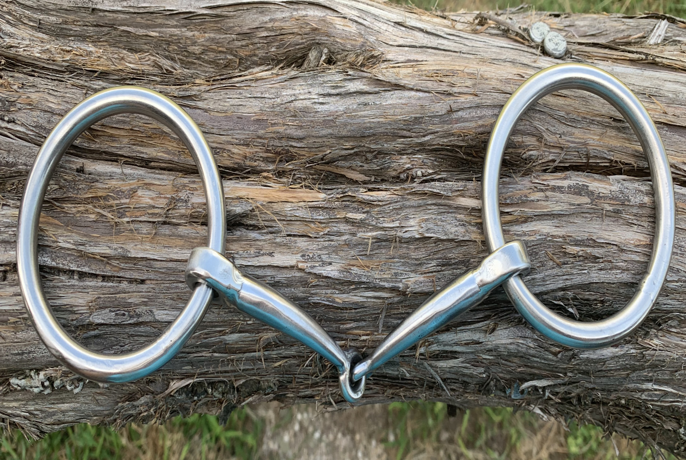O Ring Snaffle
