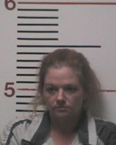 Crime Suspect - Kristine Michelle Vines