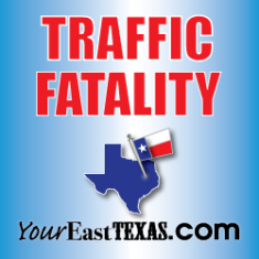 Pedestrian dies after being struck by car on W. Erwin