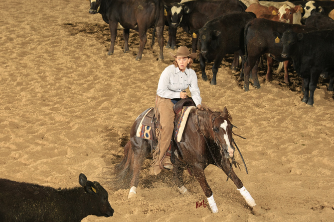 NCHA Super Stakes & Other Shows