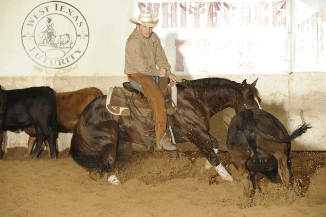 2013 WTX & Other Shows