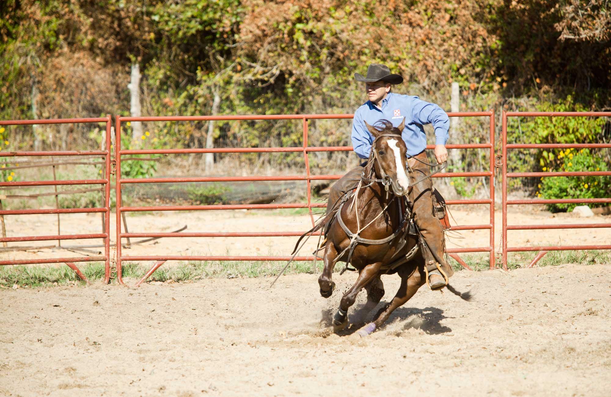 L & H Cutting Horses