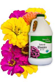 Nature's Guide: natural blooms