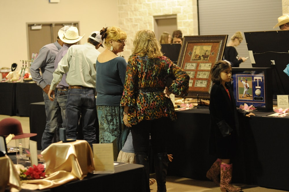 2017 Cutting and Auction
