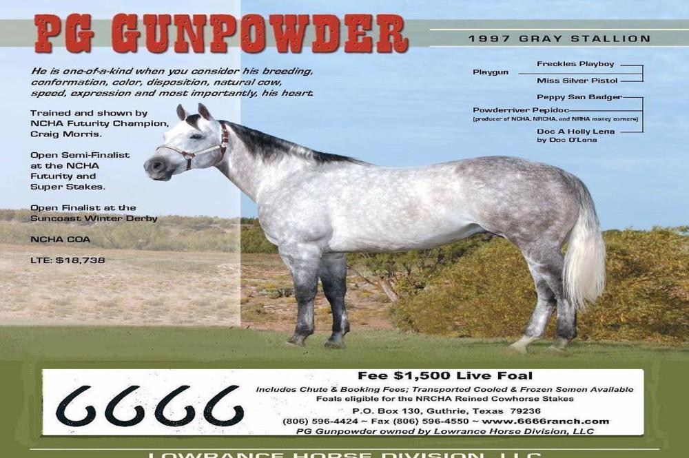 PG Gunpowder