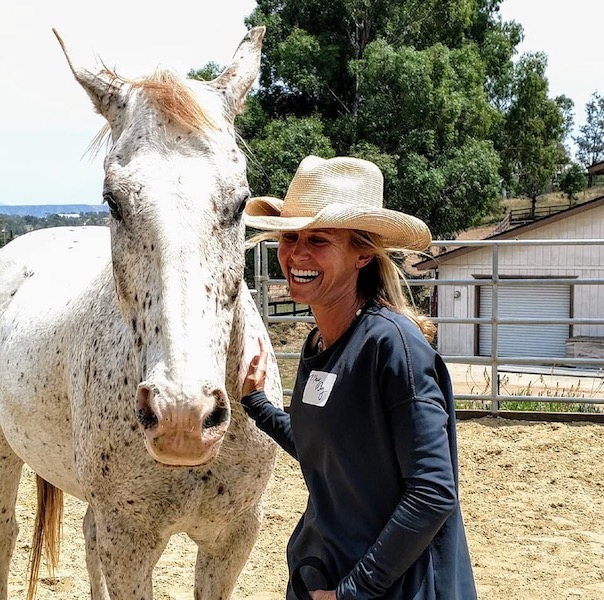 Wellness Equus Coaching