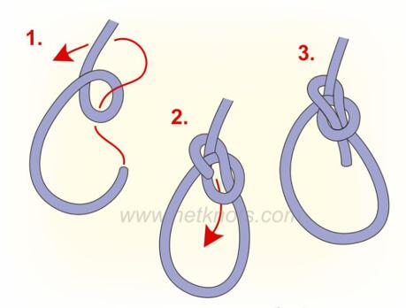 Knot Bowline