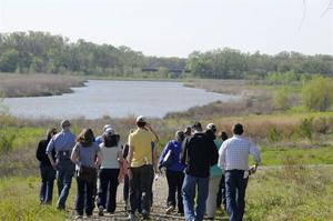 USACE wetland
